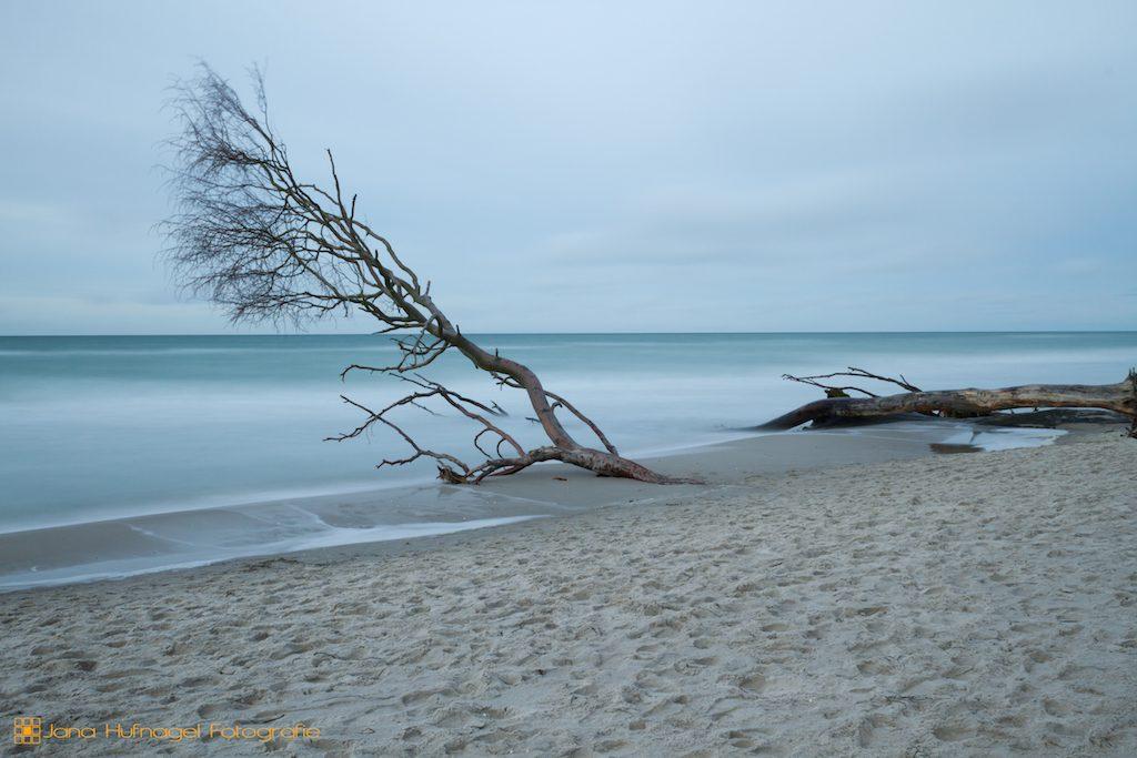 Das Meer der Ruhe